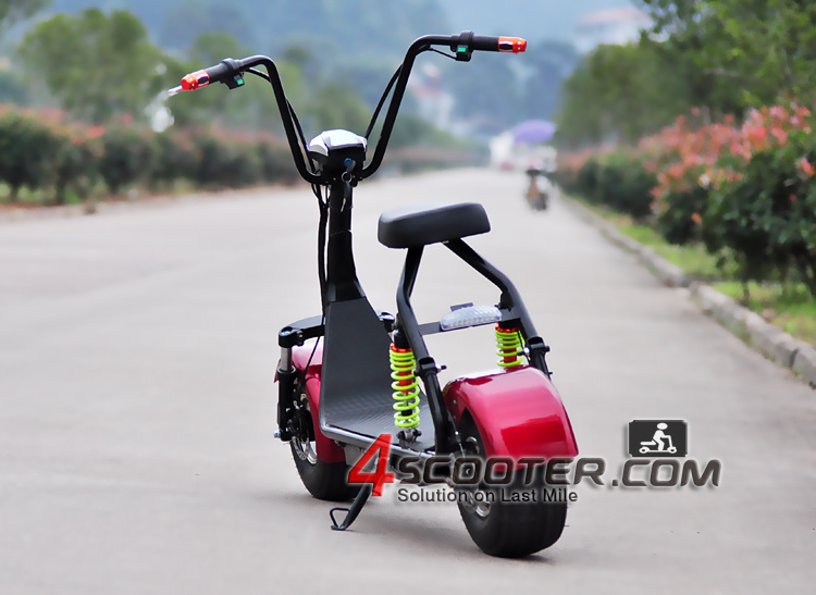 New Products Double Electric 500W Citycoco Girl on Scooter for Sale