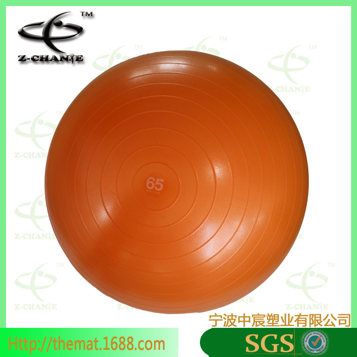 Exercise Ball with Pump and Ball Base Sale Fitness Yoga Pilates Ball