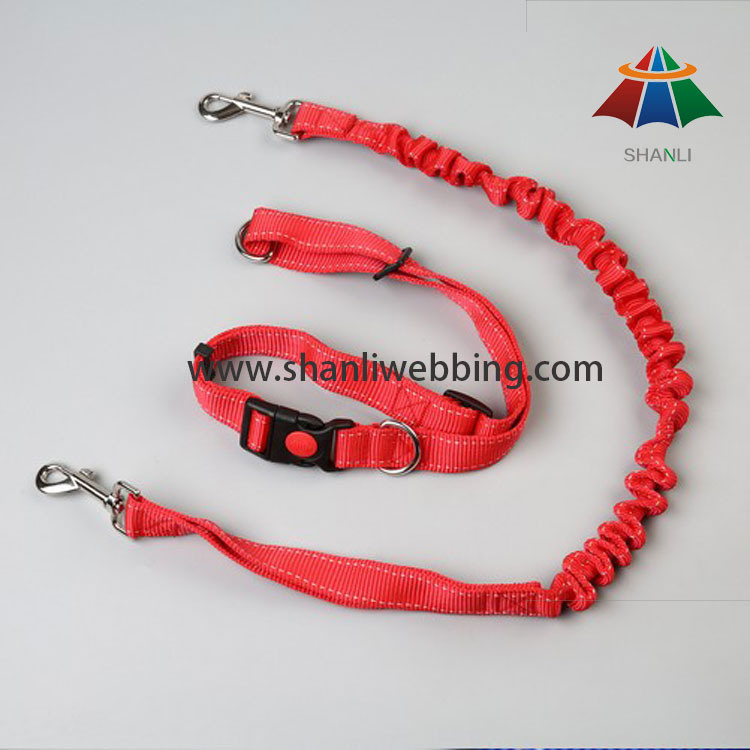 Nylon Elastic Reflective Dog Leash & Collar, Retractable Dog Leash