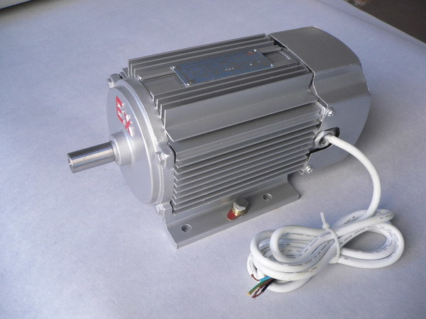 Three Phase Flameproof Induction Motor Ybjyb80 China