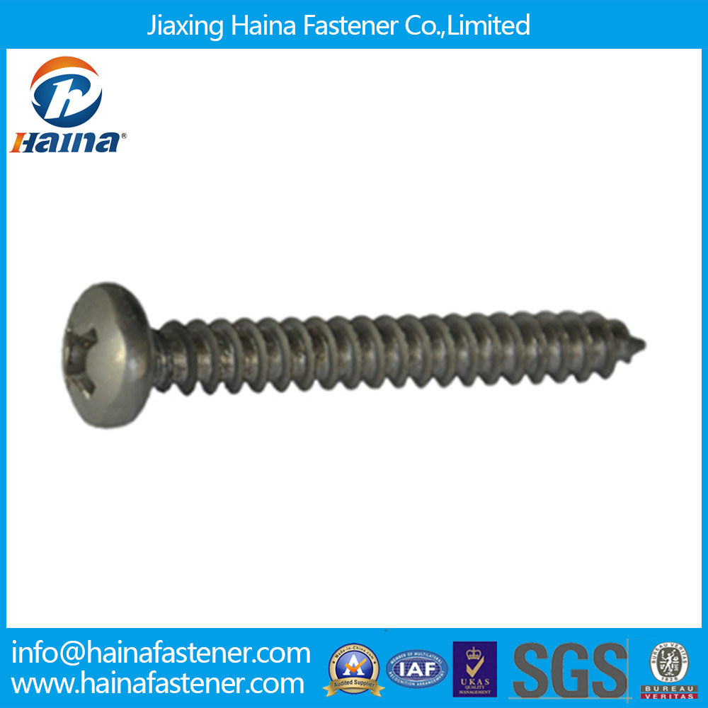 DIN7981 DIN7982 DIN7985 Fastener Screw Self Tapping Screw Machine Screw Pan Head Countersunk Head Stainless Steel Screw
