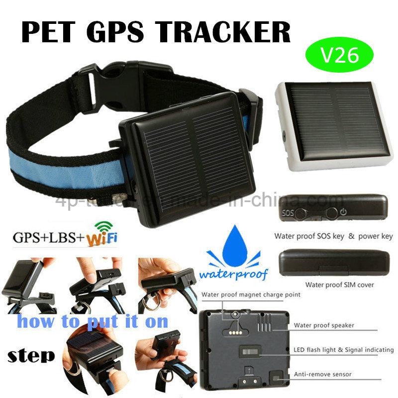 Waterproof IP67 Solar-Powered Animal/Pets GPS Tracker V26