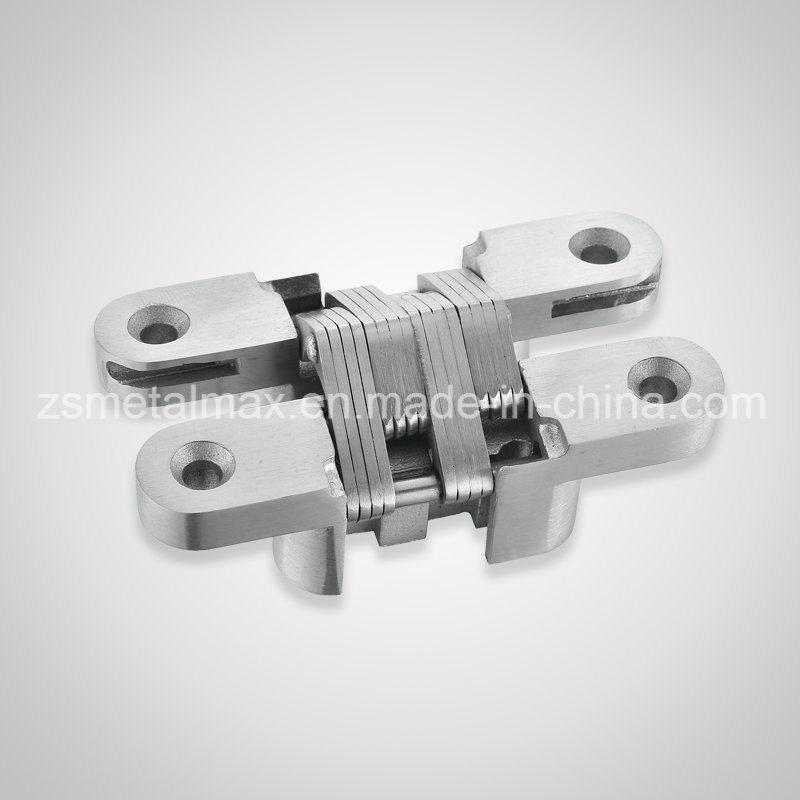 Stainless Steel Door Concealed Hinge (22A01)