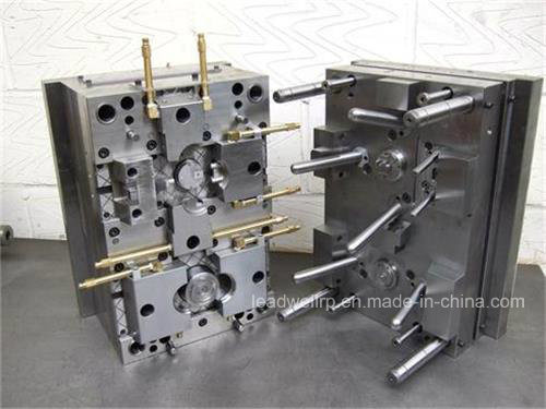 Precious Plastic Injection Mold/Mould for Comsumer Product in China (LW-03629)