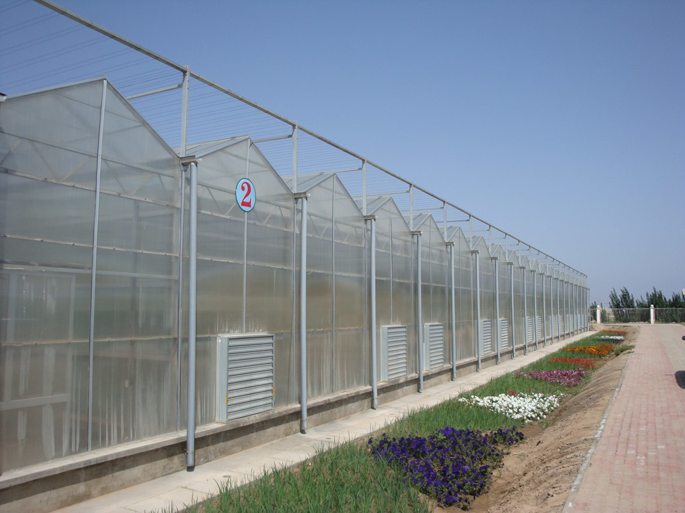 Polycarbonate Sheet Greenhouse with UV Protect 10 Years Guarantee