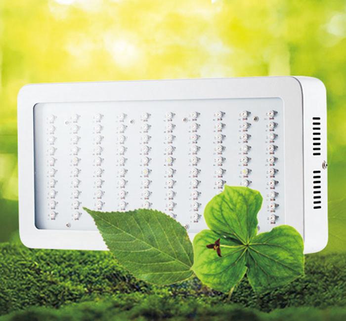 Panel LED Grow Light 600W COB Lights with Full Spectrum