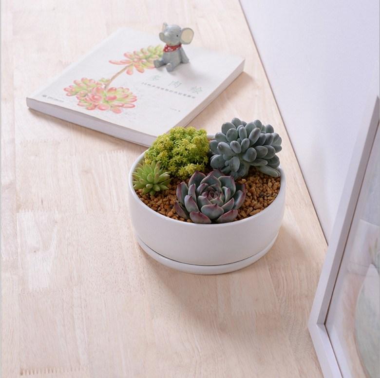 Desktop Cafe 6 Wooden Base Ceramic Flower Pot Lattice
