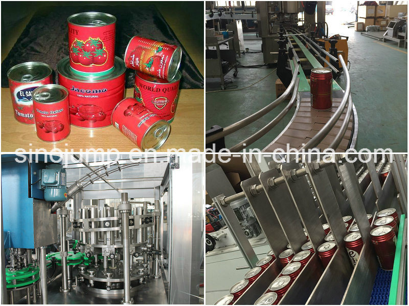 Xinjiang Tomato Paste, HACCP, ISO, Kosher, Halal, Package in Drum 220L and in Cans