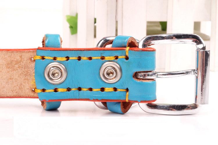 Pet Product Dog Cat Colorful Fashion Collar (C002)