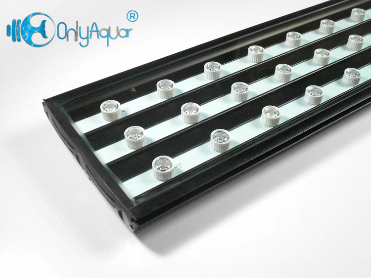 108W 90cm Brigdelux LED Aquarium Light for Coral Reef