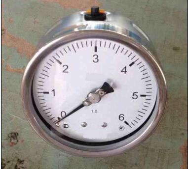 Y100 All Stainless Steel Pressure Gauge