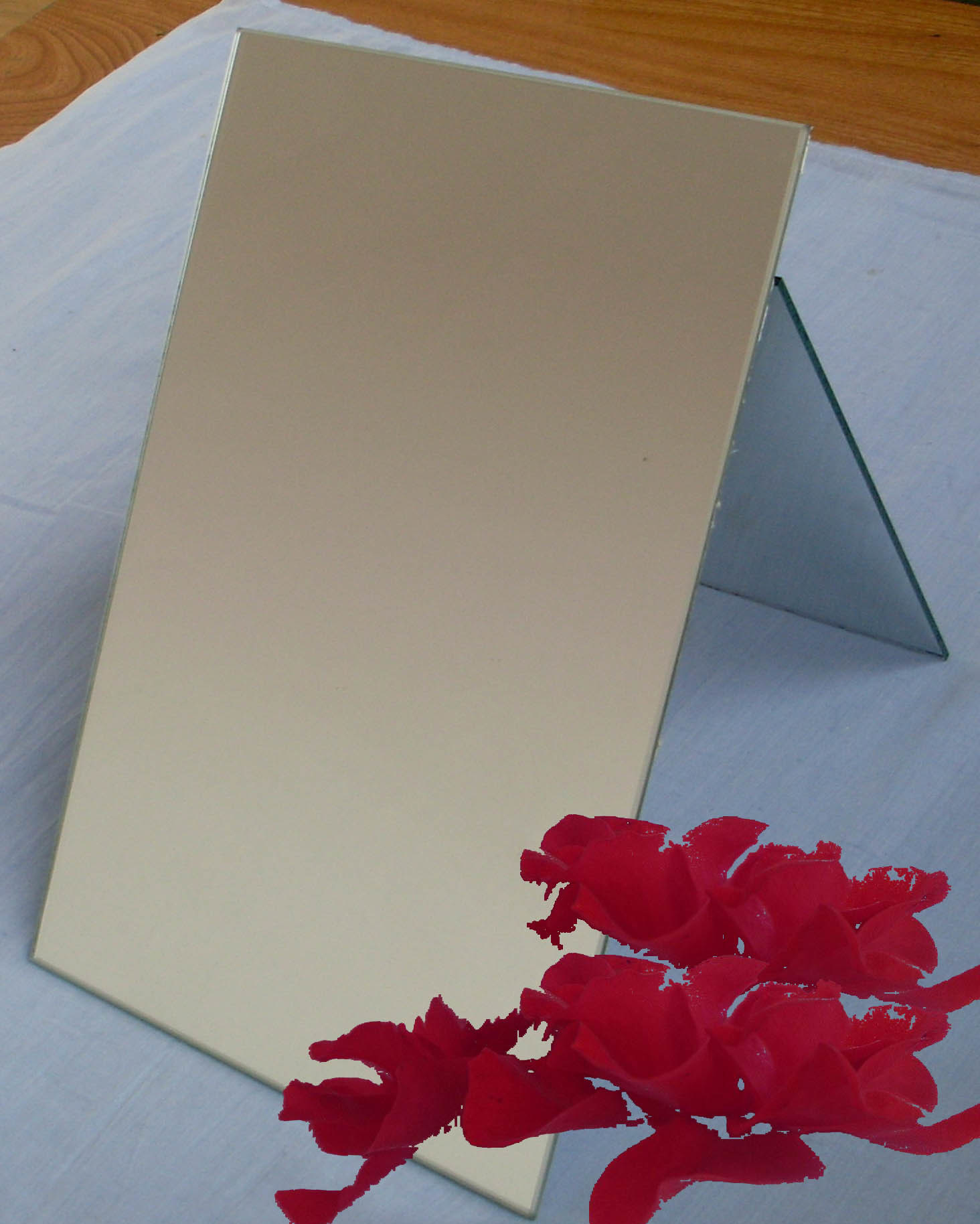 Aluminum Mirror With CAT II