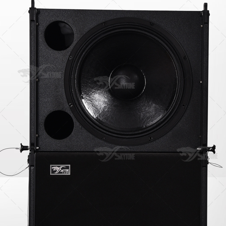 Live Show Professional Audio Single 12 Inch + Single 18 Inch Line Array System