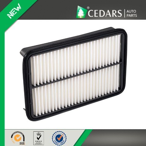 High Quality Japanese Car Air Filter with 14 Months Warranty