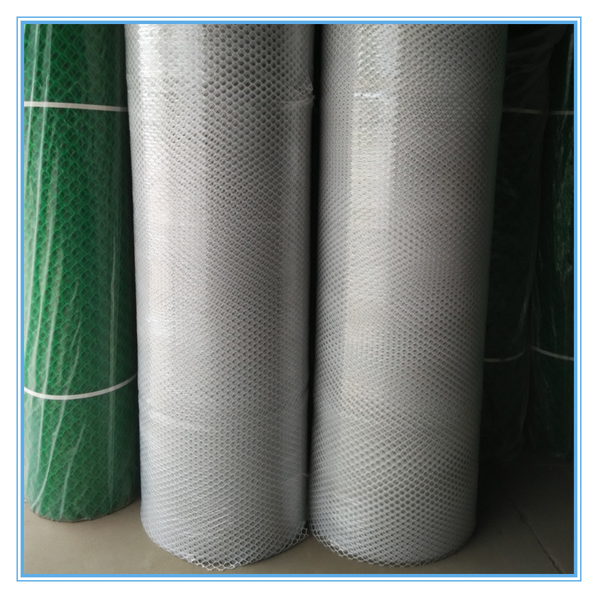 Poultry Net / Plastic Netting with High Quality (XB-PLASTIC-0017)