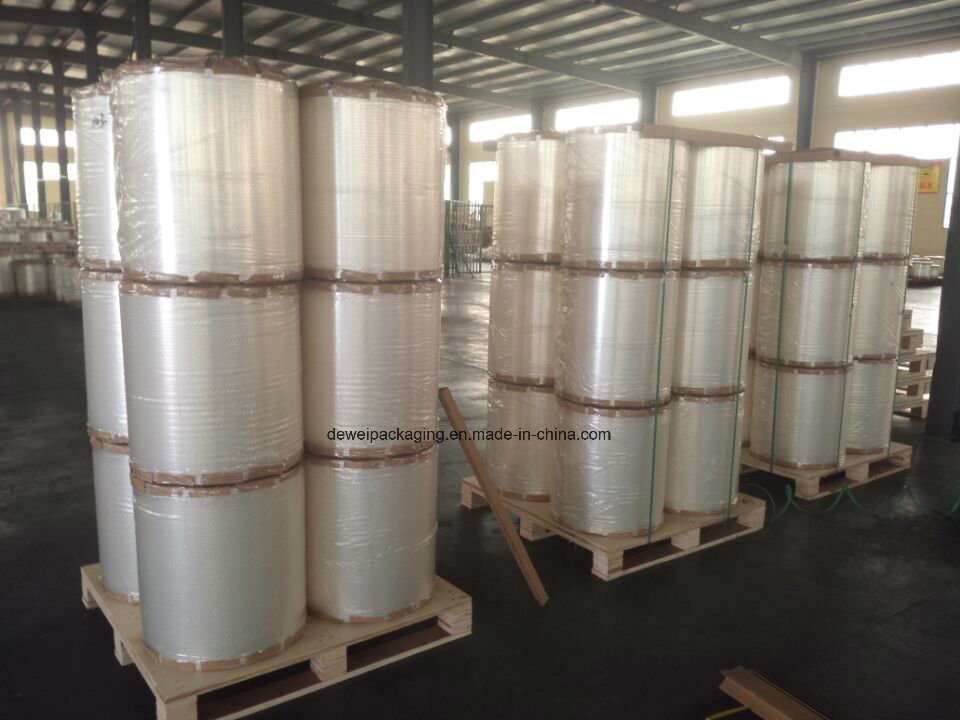 Metalized CPP Film / VMCPP Film (DW)