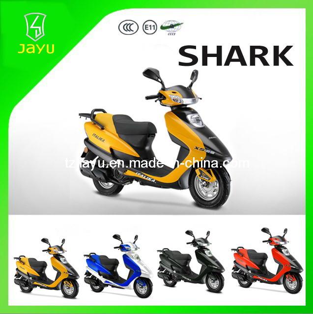 Popular Model 125cc Gasoline Scooter (Shark-125)