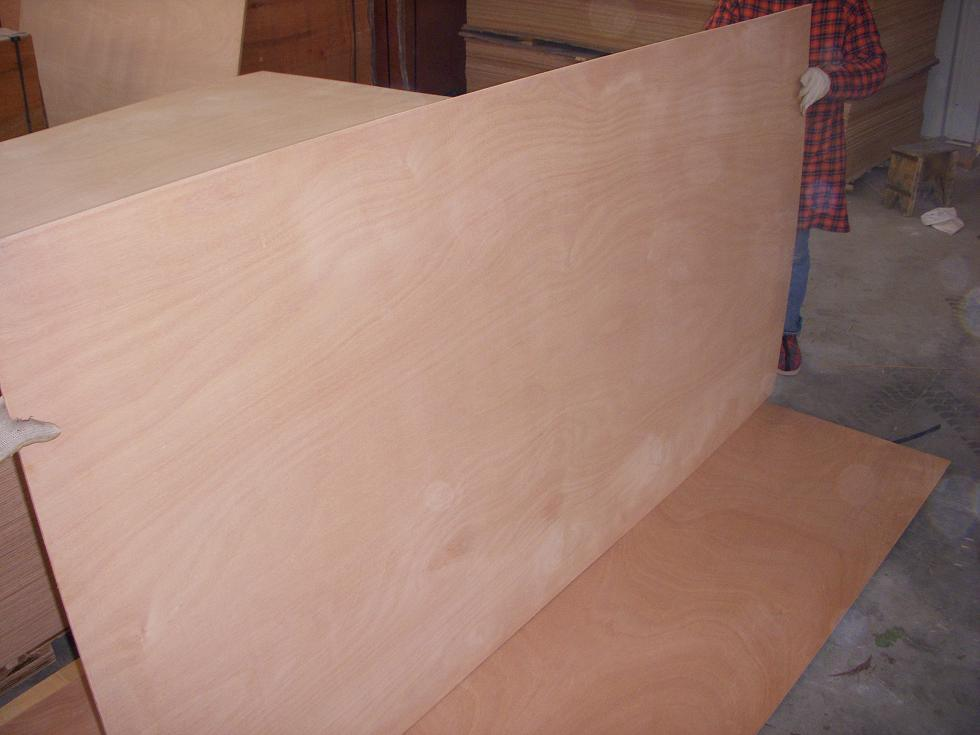 Plywood for Boat Building