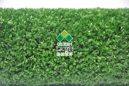 Nature Green Lawn Landscaping Turf Leisure Grass