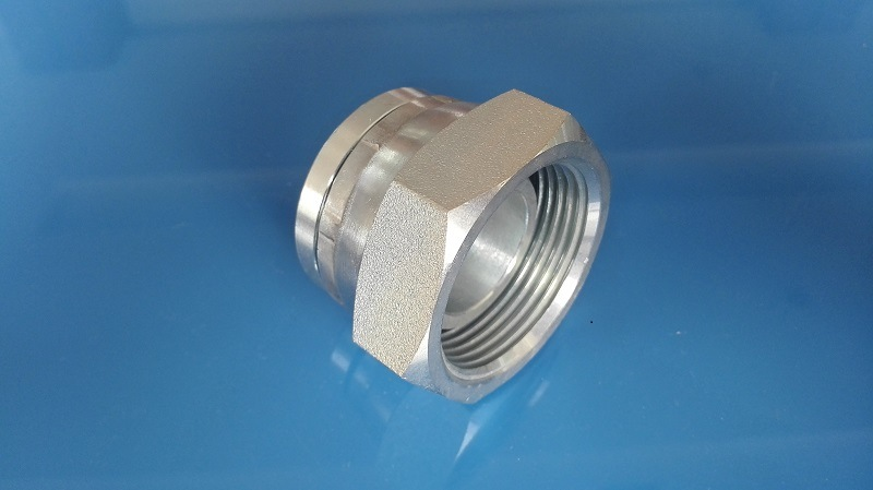 Bsp Female Cap Swivel (9B)
