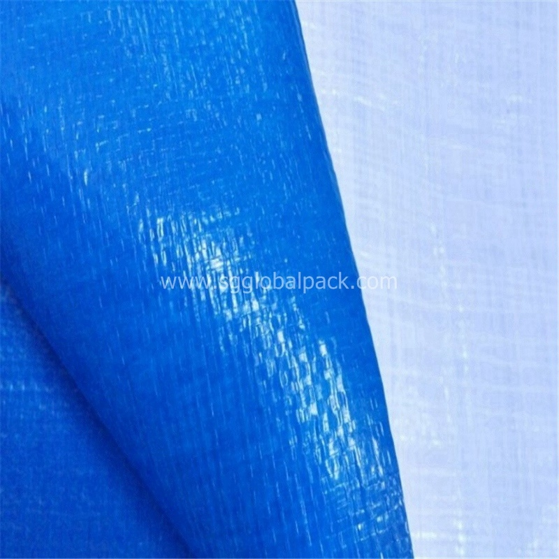 Blue White Laminated PE Tarpaulin for Truck Cover
