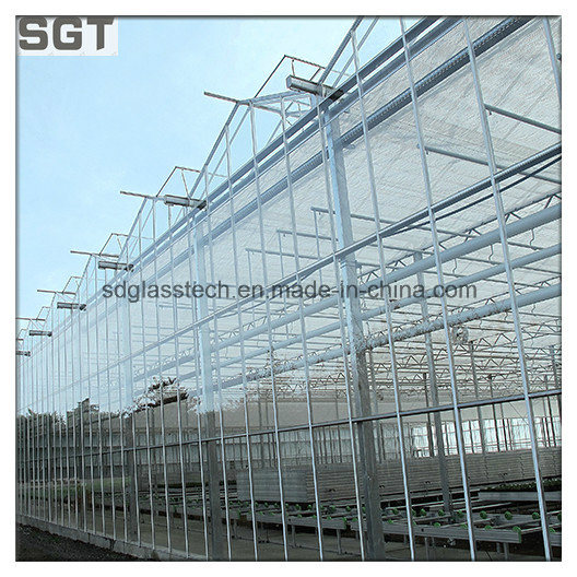 4mm 5mm Super White/Ultra Clear Tempered Glass for Greenhouse