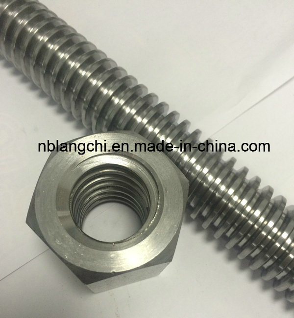 Trapezoidal Thread Acme Rod Leadscrew with Hex Nuts Tr30X6