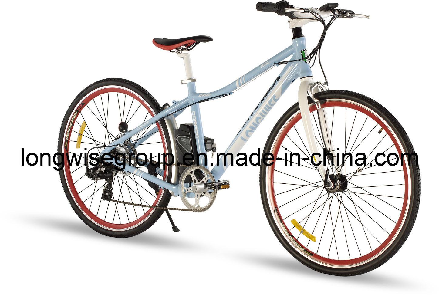 CE En15194 Mountain Electric Bicycle (LWEB-L2801)
