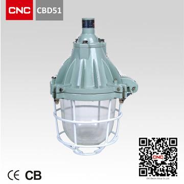 Well Sold Explosion Proof Light Halogen Light (CBD51)