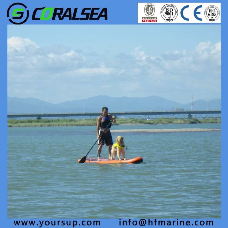 "Swimming Pool Equipment Set Paddle Sup (swoosh 10′6"")"