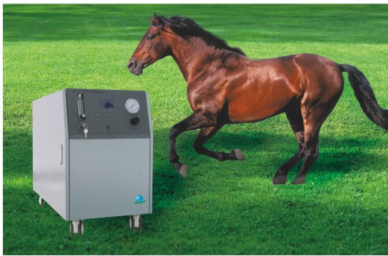 10L 15L 20L Oxygen Concentrator for Veterinary
