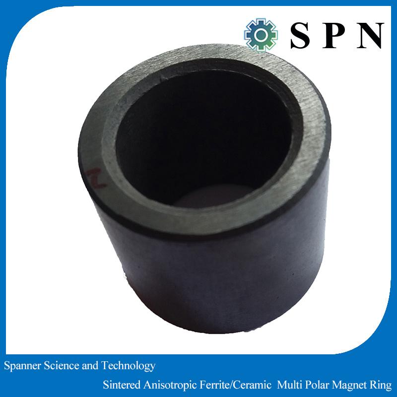 Ferrite Permanent Ceramic Ferrite Ring Magnet Multipoles for Stepping Motor