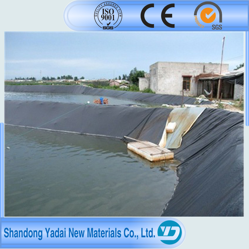 Black HDPE Plastic Sheet LDPE Geomembrane/Geomembrane Liner and Pond Lining Sheet