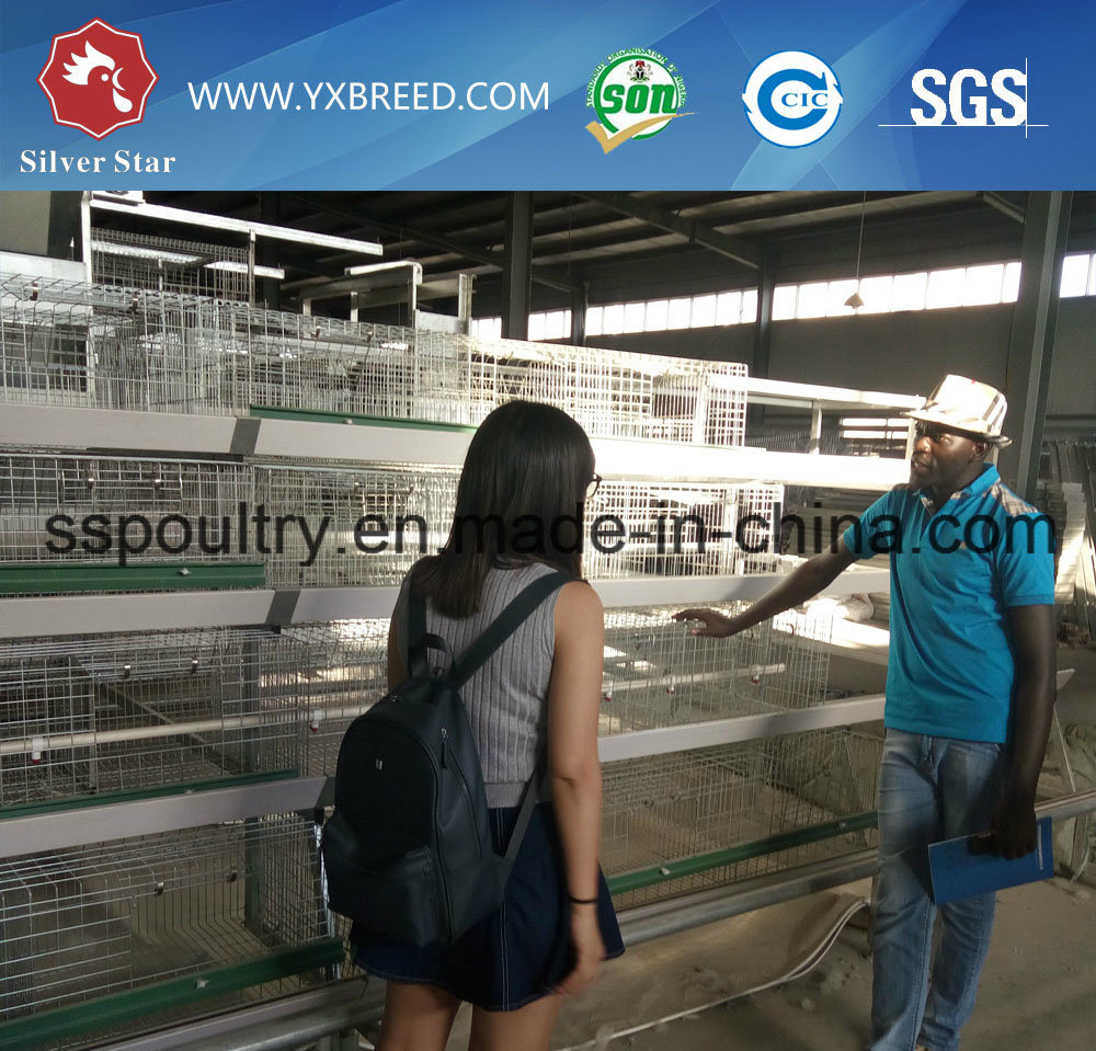 Poultry Equipment High Capacity Battery Chicken Farm Cage