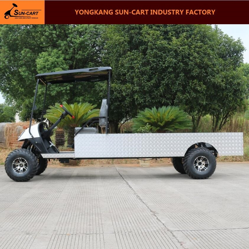 2 Passenger Customized Electric Transport Golf Cart