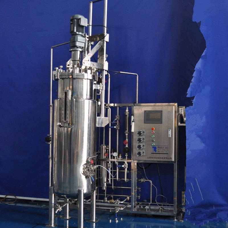 300 Liters Stainless Steel Fermenter (Mechanical stirring)
