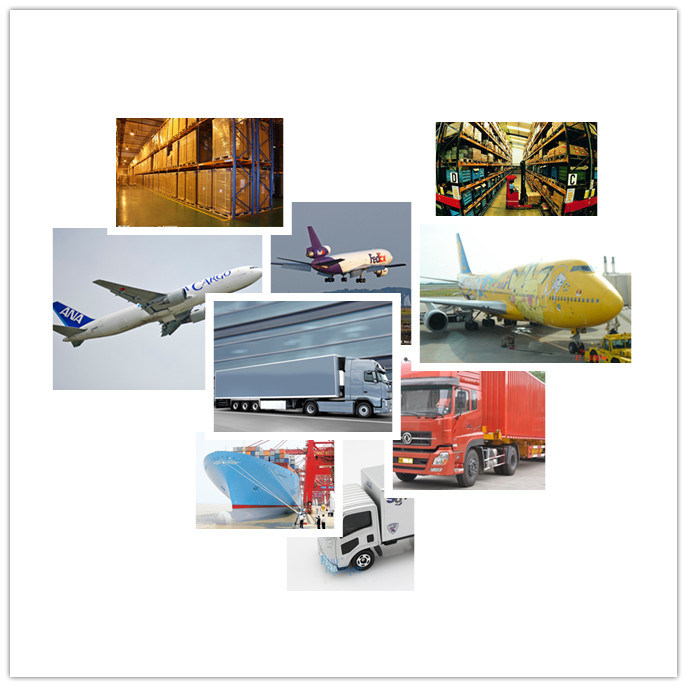 Best Consolidation of Sea Freight and Air Freight to Worldwide
