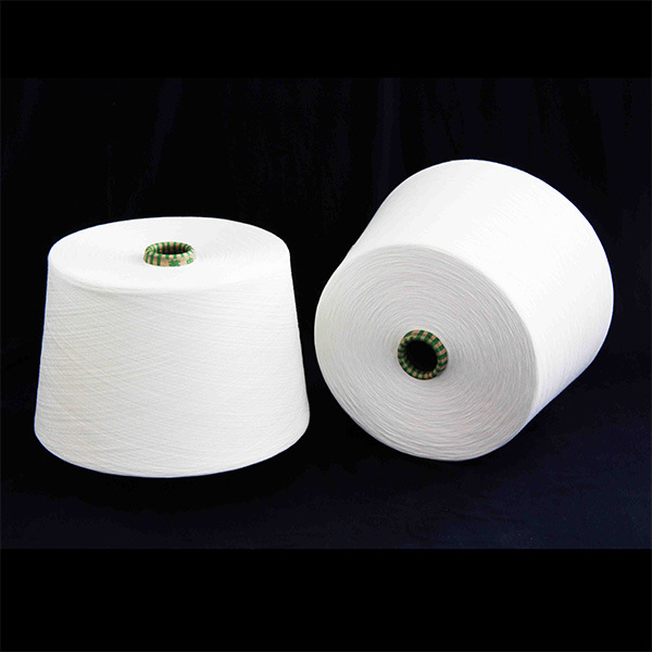 16/1 100% Polyester Ring Spun Yarn/Terylene Yarn