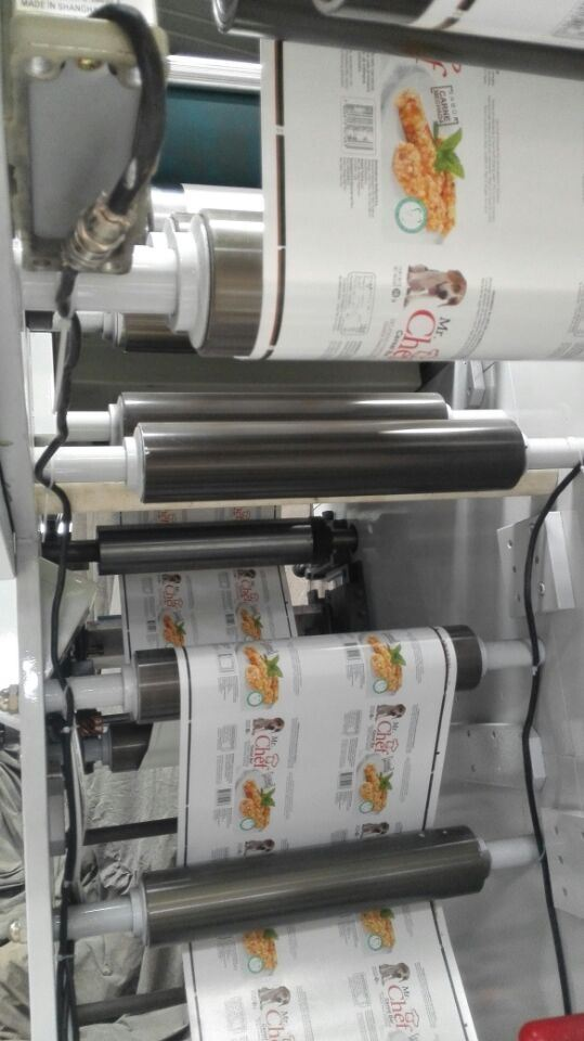 Flexographic Printing Machine (Ry-320g-1 Color)