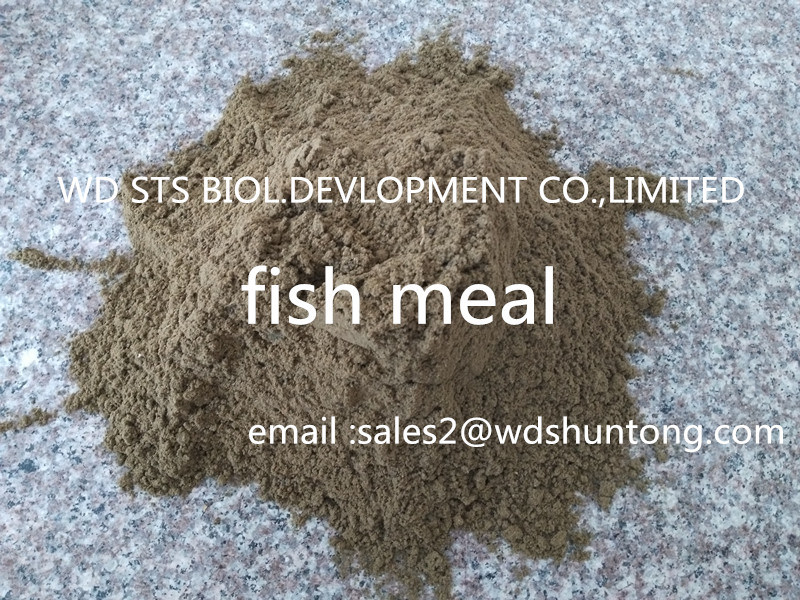 Feed Additive Fish Meal with High Quality