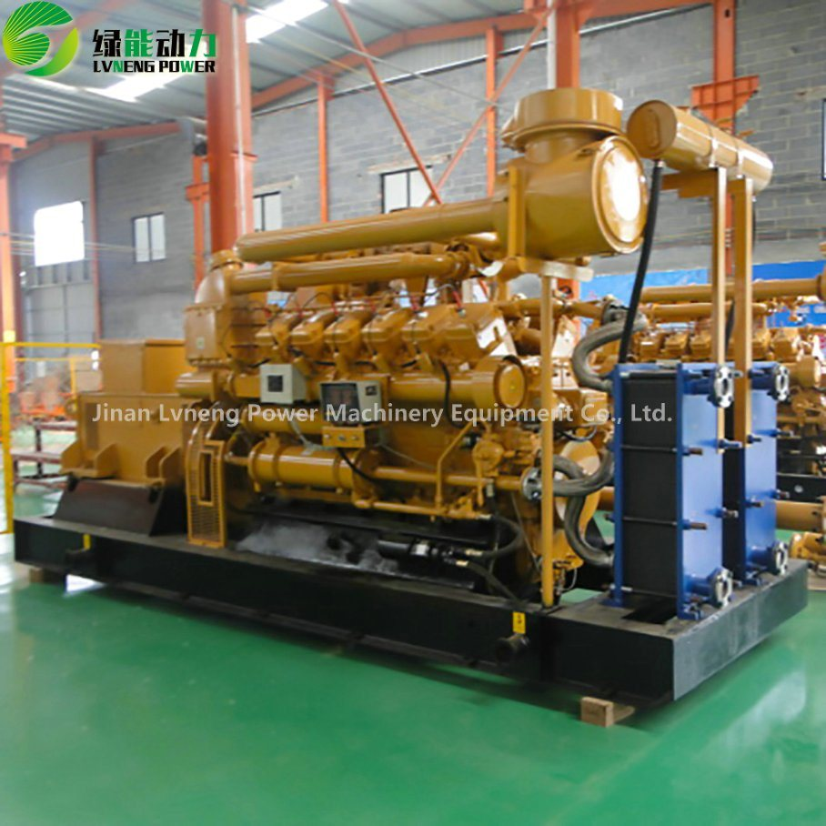 Electric Power LPG Biomass Biogas Syngas Natural Gas Generator