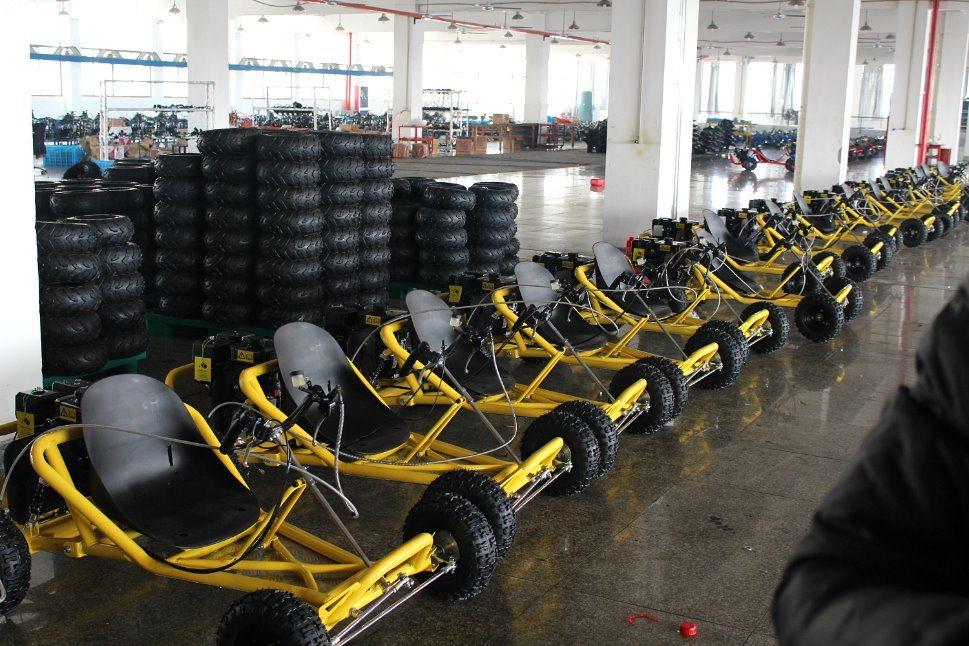 Gas Kart 196cc Hydraulic Disc Brake Pull Start Buggy Go Cart