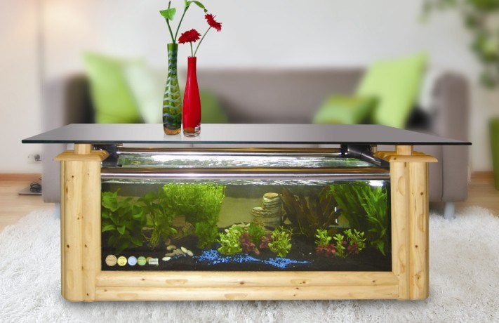 1000 Ideas About Fish Tank Coffee Table On Pinterest Coffee Table Aquarium Fish Tank Table