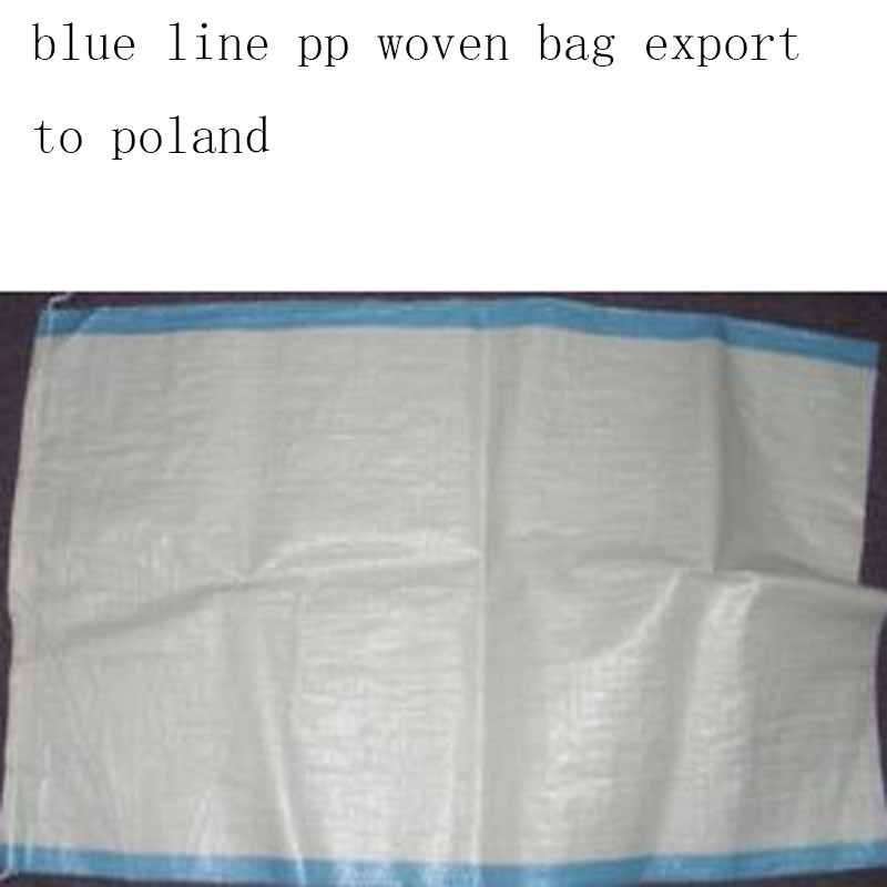 White PP Woven Bag Export to Poland