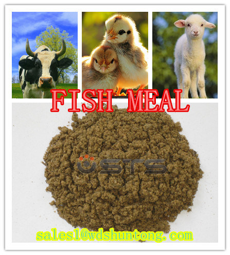 High Quality with Lowest Price Animal Feed Additive