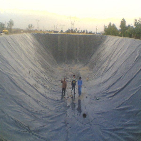 HDPE Black Geomembrane Film for Fish Pond Liner