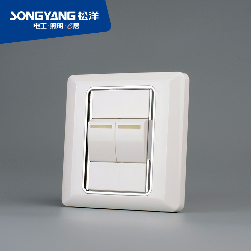 Flame Retardant PC Plastic Series 2gang Switch