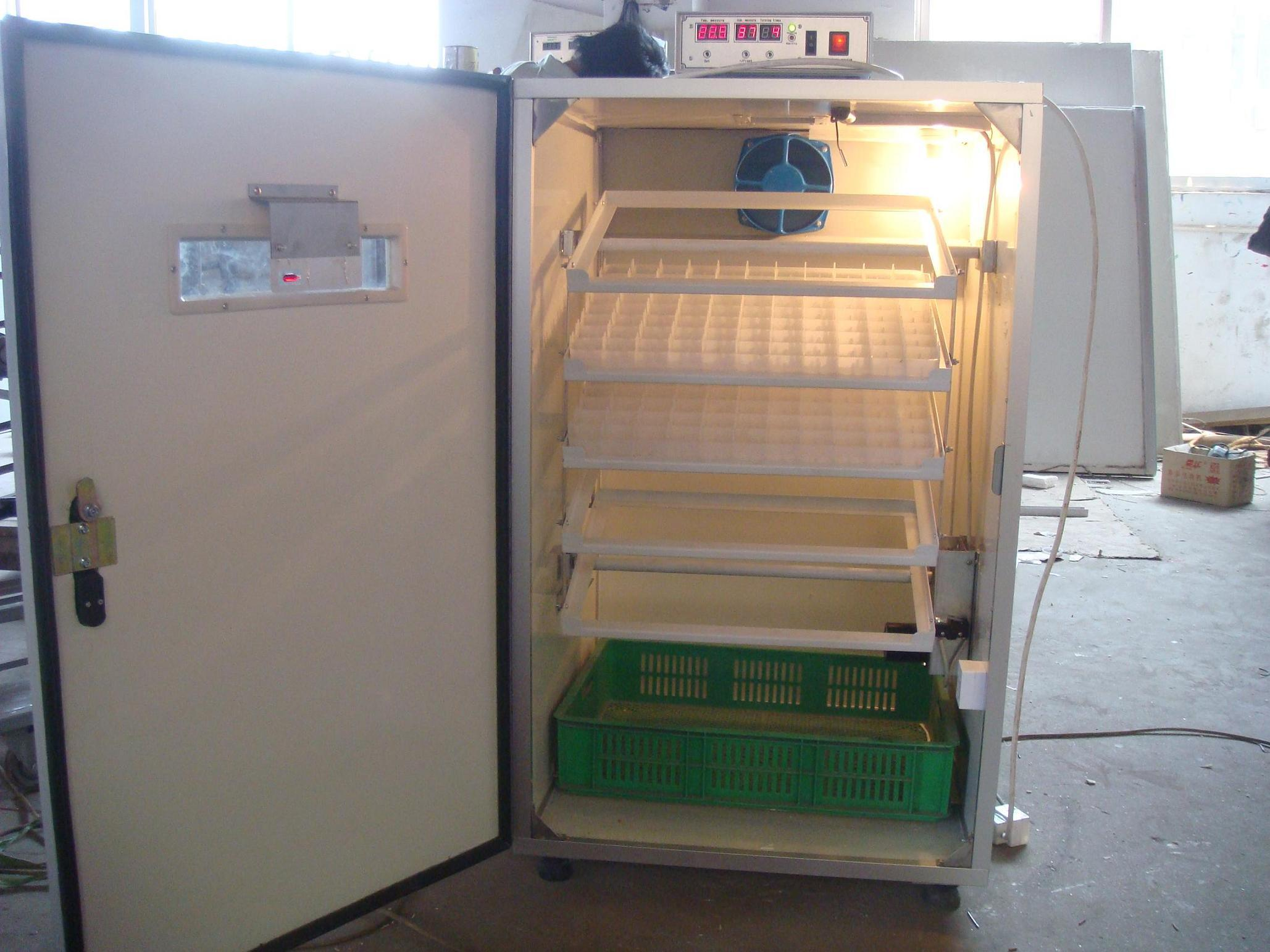 Buy Incubator Chicken Eggs In India Makers