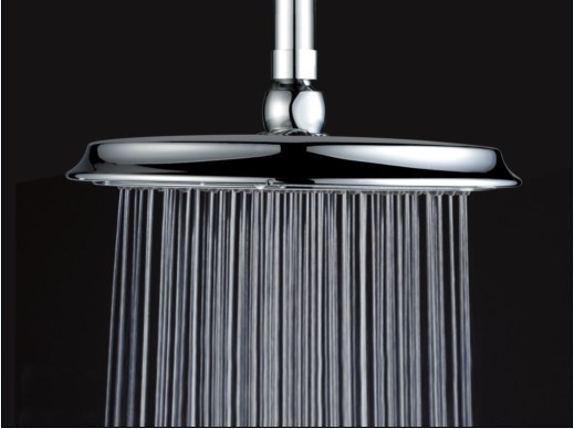 Shower Head (019010)