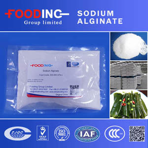 High Quality 500cps Industrial Grade Sodium Alginate Textile Grade 80/120/200 Mesh Manufacturer